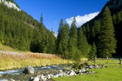 góry rzeczne leśne fotografia royalty free