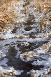 Góry rzeka wśród zamarzniętej trawy zdjęcie stock