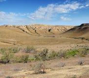 Góry Shalkar-Nura Kazakstan Fotografia Stock