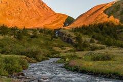 Góry siklawy drzew rzeczny świt Zdjęcia Stock