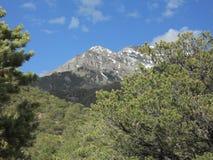 góry skaliste colorado Obrazy Stock