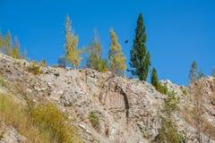 Góry sosny las w pogodnej pogodzie Podróż i przygoda w lecie lub jesieni wieczorem mgły nad narażenia haze kur długa górska woda  Zdjęcie Royalty Free