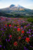 Góry St Helens zdjęcia royalty free
