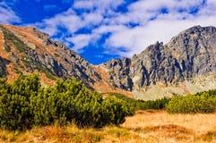 góry tatra Zdjęcia Royalty Free