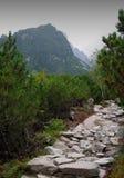 Góry Vysoke Tatry (Wysoki Tatras) Zdjęcie Stock