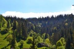 Góry w lecie zdjęcia royalty free