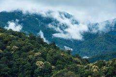 Góry w tropikalnym tropikalny las deszczowy doliny krajobrazie z mgłą przy Mo Fotografia Royalty Free