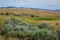 Góry zbliżają mesy, Idaho Zdjęcia Royalty Free