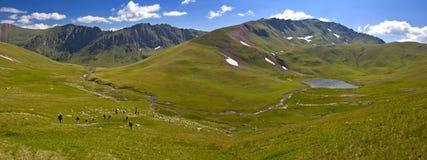 Góry zielona panorama Zdjęcie Royalty Free