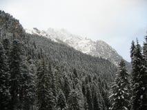 góry zimy. Fotografia Stock
