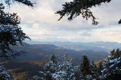 Górzysty krajobraz podczas zimy, z chmurami i słońce promieniami przez ramy śnieżni jedlinowi drzewa, obraz stock