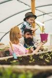 gödningsmedel jordgödningsmedelproduktion gödningsmedel för jord jordgödningsmedel i växthus ny livstid arkivbild