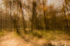 Gömd by Arkivbilder