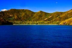 Gömd kokosnötdunge i de Yasawa öarna royaltyfria bilder