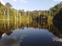 gömd lake royaltyfri foto