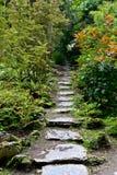 Gömd stenbana i den Muckross godsträdgården, Irland royaltyfri fotografi