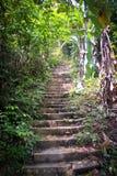 Gömd trappa som uppåt leder Royaltyfri Fotografi