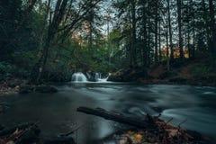 Gömd vattenfall Fotografering för Bildbyråer