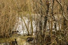 Gömd vattenfall på Mason Creek royaltyfria foton