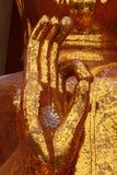 Gömma i handflatan av buddha Arkivbild