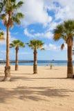 Gömma i handflatan av den lasTeresitas stranden, Tenerife, Spanien arkivbild