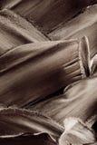 Gömma i handflatan Backgournd Royaltyfri Foto