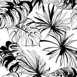 Gömma i handflatan blom- sömlös modellbakgrund för den tropiska djungeln med le royaltyfri illustrationer