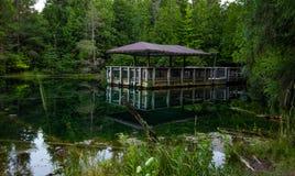 Gömma i handflatan bokdelstatsparken i Michigan& x27; s-Upperhalvö Fotografering för Bildbyråer
