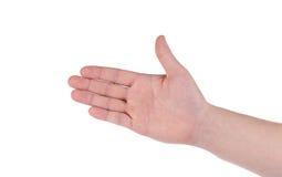 gömma i handflatan den öppna isolerade manlign för bakgrundsgesten handen white Arkivfoton