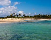 gömma i handflatan den klara ön 3d framförandeskytrees Arkivfoton