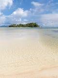 gömma i handflatan den klara ön 3d framförandeskytrees Royaltyfri Foto