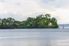 gömma i handflatan den klara ön 3d framförandeskytrees Royaltyfri Fotografi
