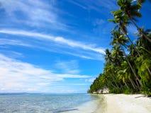 Gömma i handflatan, den tropiska stranden och havet Arkivbilder