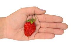 gömma i handflatan jordgubben arkivfoto
