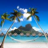 Gömma i handflatan med hängmattan och hav. Bora-Bora. Polynesia Royaltyfri Bild