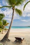 Gömma i handflatan och den tropiska stranden i tropiskt paradis. Sommartid som är holyday i Dominikanska republiken, Seychellerna  Arkivbild