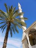 Gömma i handflatan och moskén, Turkiet Royaltyfria Foton