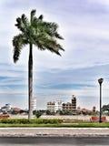 Gömma i handflatan och staden Phnom Penh i bakgrunden på en molnig dag Arkivbild