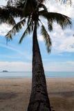 Gömma i handflatan på kusten Royaltyfri Fotografi