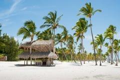 Gömma i handflatan på stranden royaltyfri fotografi