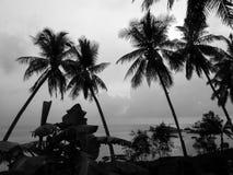 gömma i handflatan silhouettetrees Royaltyfri Fotografi
