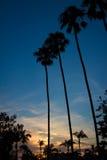 gömma i handflatan solnedgång Fotografering för Bildbyråer