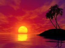 gömma i handflatan solnedgångtrees Royaltyfria Bilder