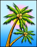 gömma i handflatan suntrees tropisk w royaltyfri illustrationer