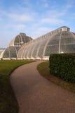 Gömma i handflatanhuset, Kew trädgårdar Royaltyfri Foto