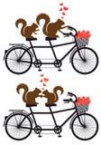 Gömma sig förälskat på cykeln, vektor Fotografering för Bildbyråer