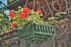 Gömställe-kruka med blommor royaltyfri fotografi
