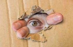 Gömt öga som håller ögonen på till och med hålet i papp för att skyla över brister arkivbilder