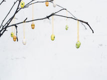Gör bar filialer med färgrika påskgarneringägg Arkivbild