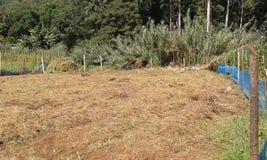 Gör bar land för jordbruks- i Ambegoda Arkivbild